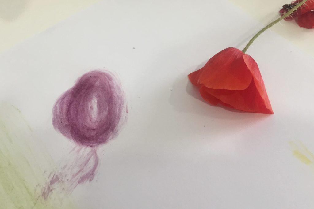 Colores Naturales para pintar