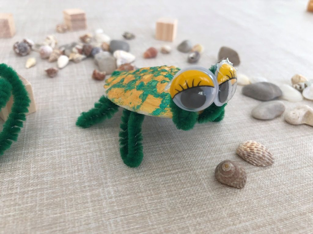 tortuga con concha de mar manualidad para niños