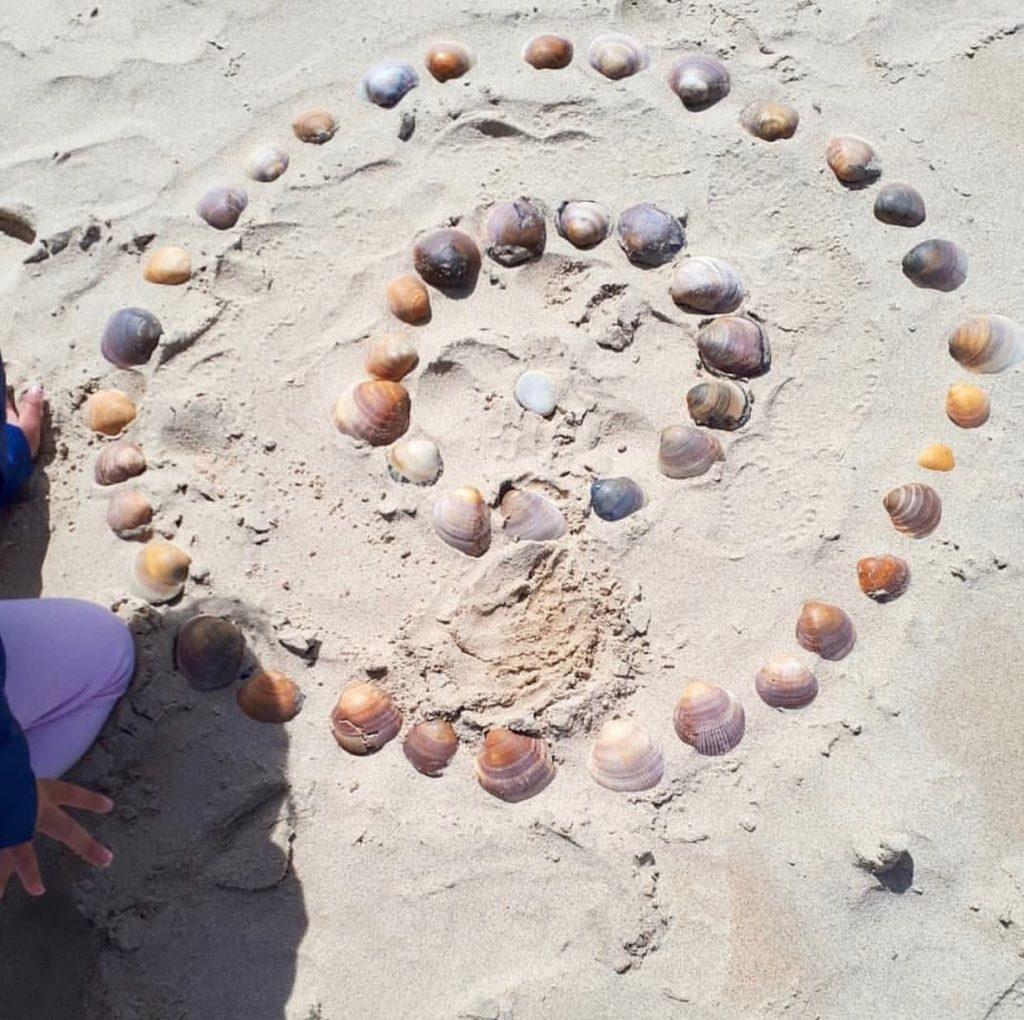 mandala de conchas de mar