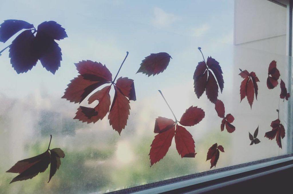 decorar las ventanas con hojas secas