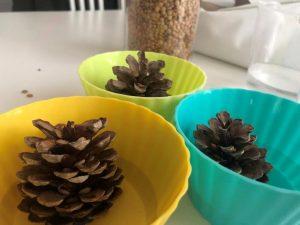 ideas de actividades con elementos naturales para niños